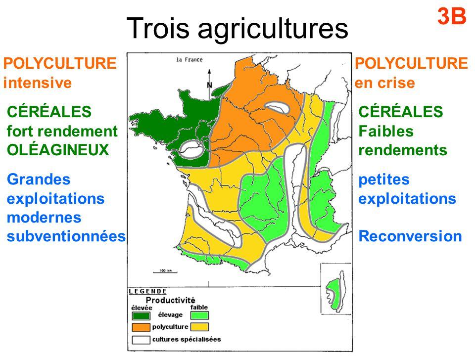 Trois agricultures 3B POLYCULTURE intensive CÉRÉALES fort rendement OLÉAGINEUX Grandes exploitations modernes subventionnées POLYCULTURE en crise CÉRÉALES Faibles rendements petites exploitations Reconversion