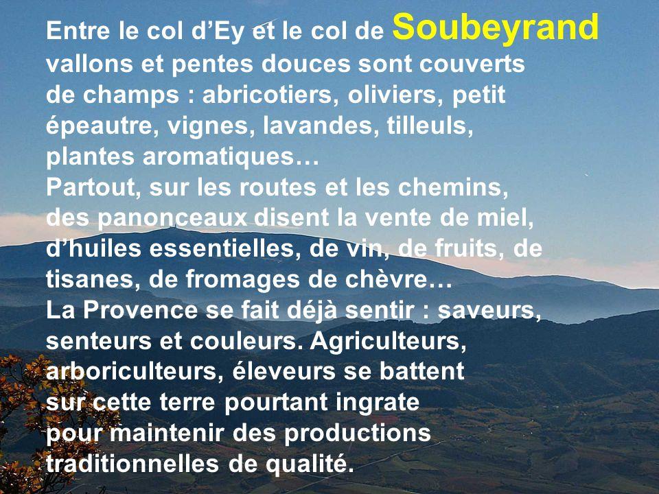 Soubeyra nd Reychasset Perty En Drome Provençale dans les Baronnies