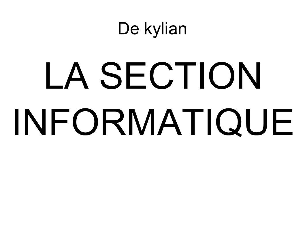 De kylian LA SECTION INFORMATIQUE