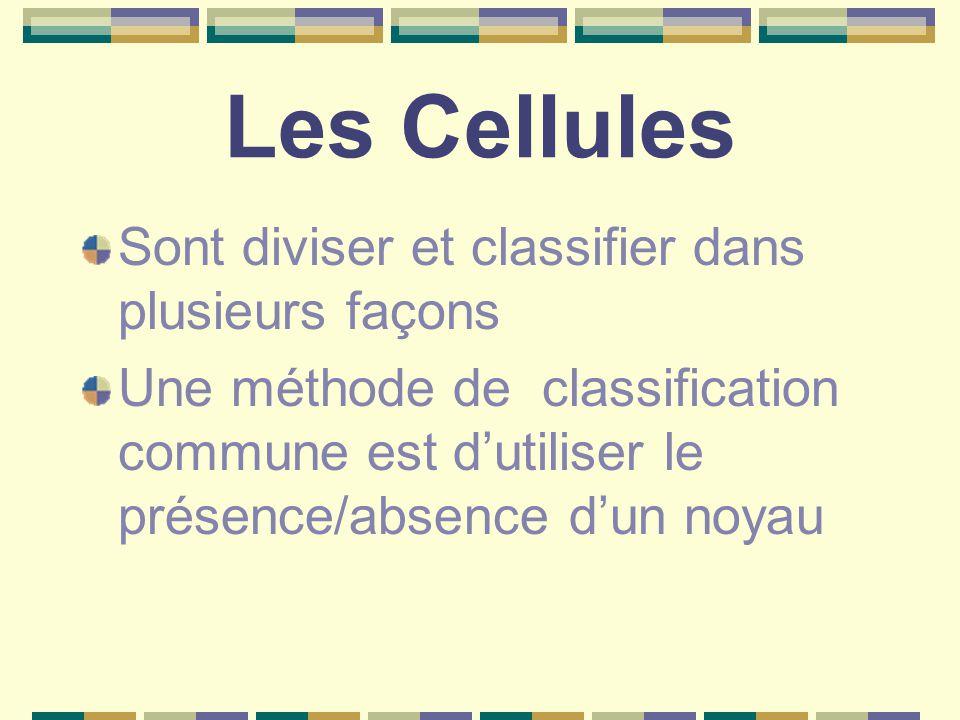 Les Cellules Sont diviser et classifier dans plusieurs façons Une méthode de classification commune est d'utiliser le présence/absence d'un noyau