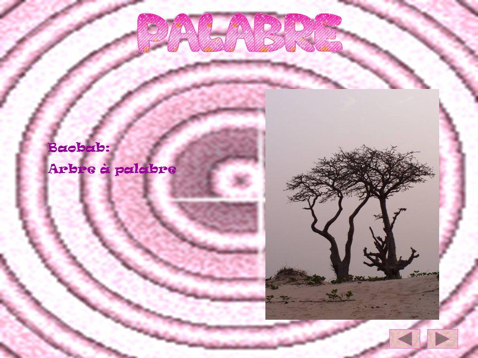 Baobab: Arbre à palabre