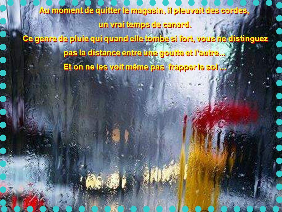 Au moment de quitter le magasin, il pleuvait des cordes, un vrai temps de canard.