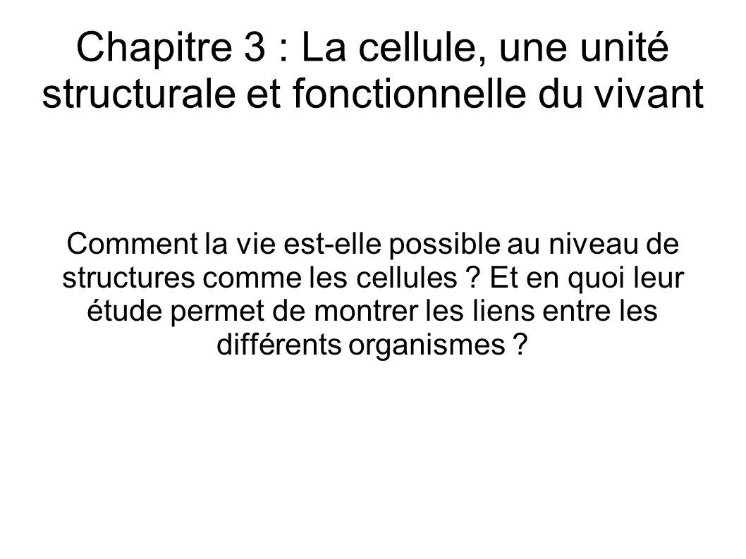 Chapitre 3 : La cellule, une unité structurale et fonctionnelle du vivant Comment la vie est-elle possible au niveau de structures comme les cellules .