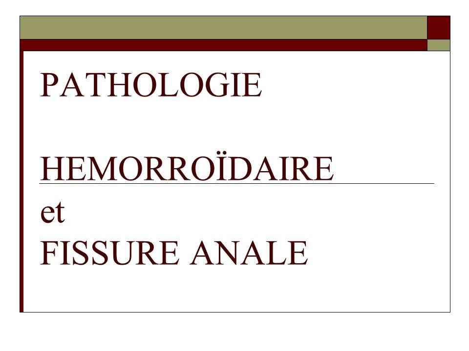 Définitions  Hémorroïdes internes = cavités sous-muqueuses remplies de sang  Hémorroïdes externes = veines sous-cutanées qui drainent la marge anale  La ligne pectinée sépare les HI des HE