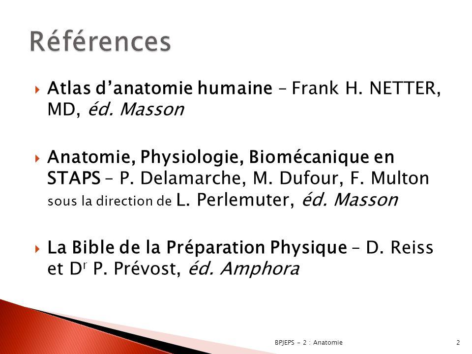  Généralités ◦ Terminologie ◦ Organe ◦ Os ◦ Articulations ◦ Muscles 3BPJEPS - 2 : Anatomie