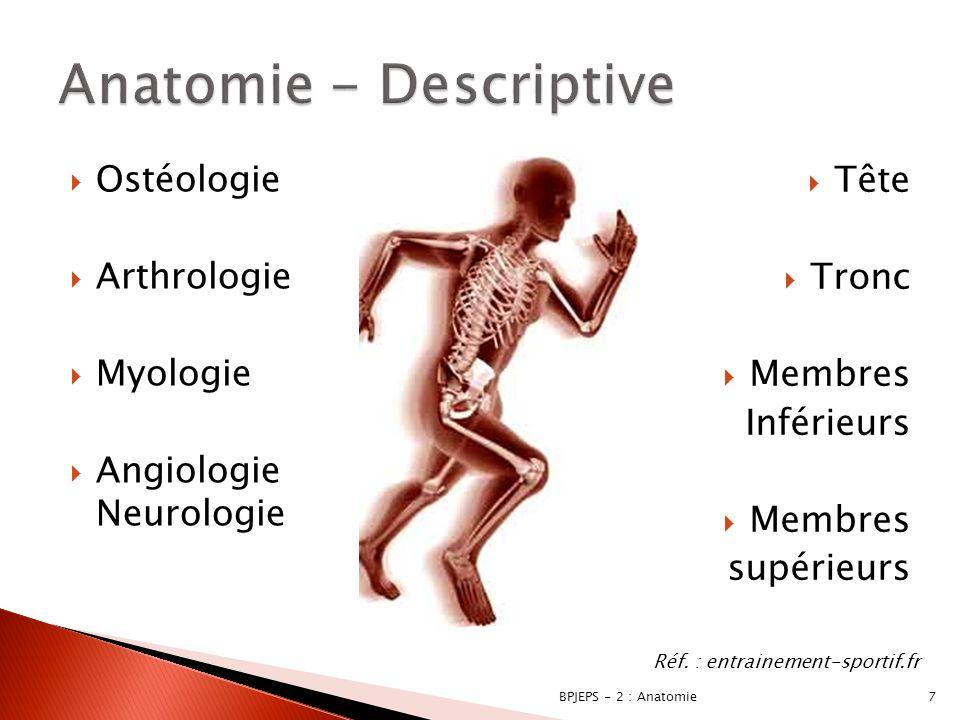  Ostéologie  Arthrologie  Myologie  Angiologie Neurologie 7BPJEPS - 2 : Anatomie Réf. : entrainement-sportif.fr  Tête  Tronc  Membres Inférieur