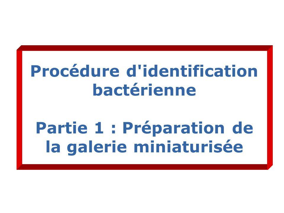 Procédure d identification bactérienne Partie 1 : Préparation de la galerie miniaturisée