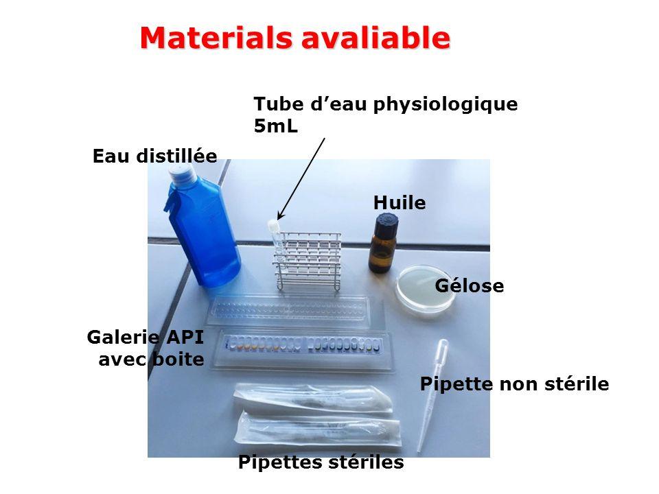Eau distillée Tube d'eau physiologique 5mL Huile Gélose Galerie API avec boite Pipettes stériles Pipette non stérile Materials avaliable