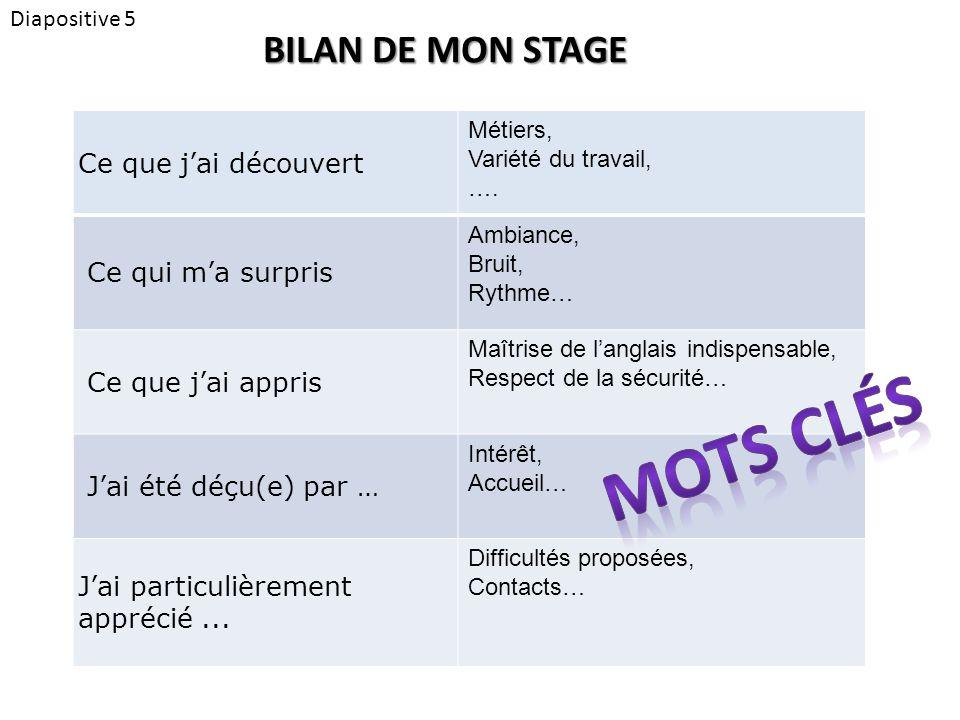 Diapositive 5 BILAN DE MON STAGE Ce que j'ai découvert Métiers, Variété du travail, ….