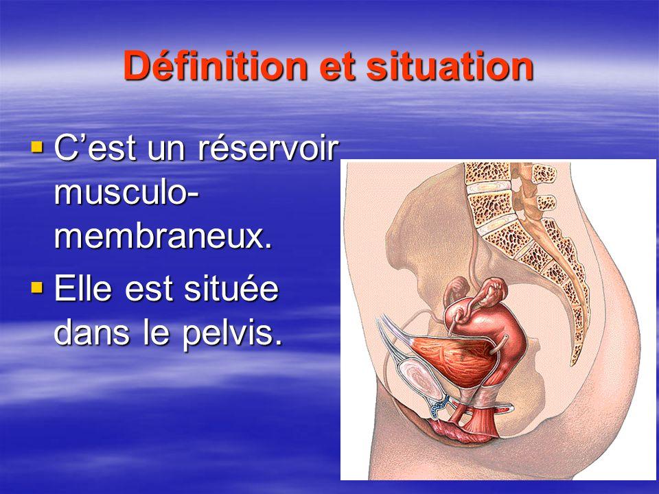 Définition et situation  C'est un réservoir musculo- membraneux.  Elle est située dans le pelvis.