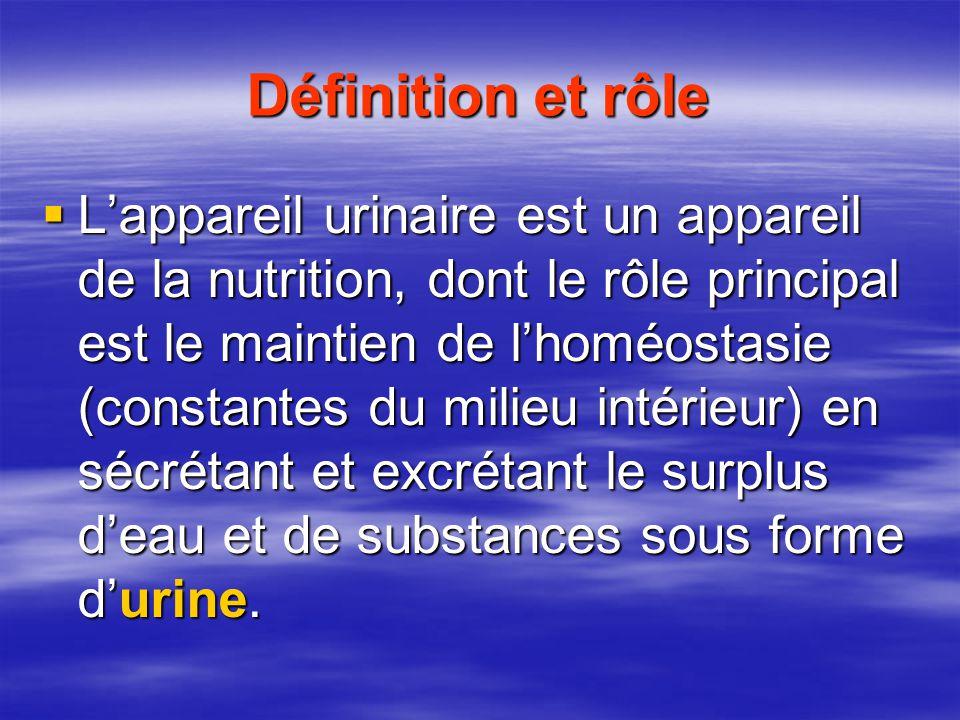 Définition et rôle  L'appareil urinaire est un appareil de la nutrition, dont le rôle principal est le maintien de l'homéostasie (constantes du milieu intérieur) en sécrétant et excrétant le surplus d'eau et de substances sous forme d'urine.