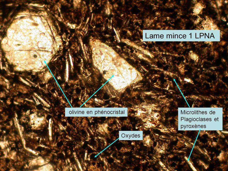 Lame mince 1 LPNA olivine en phénocristal Microlithes de Plagioclases et pyroxènes Oxydes