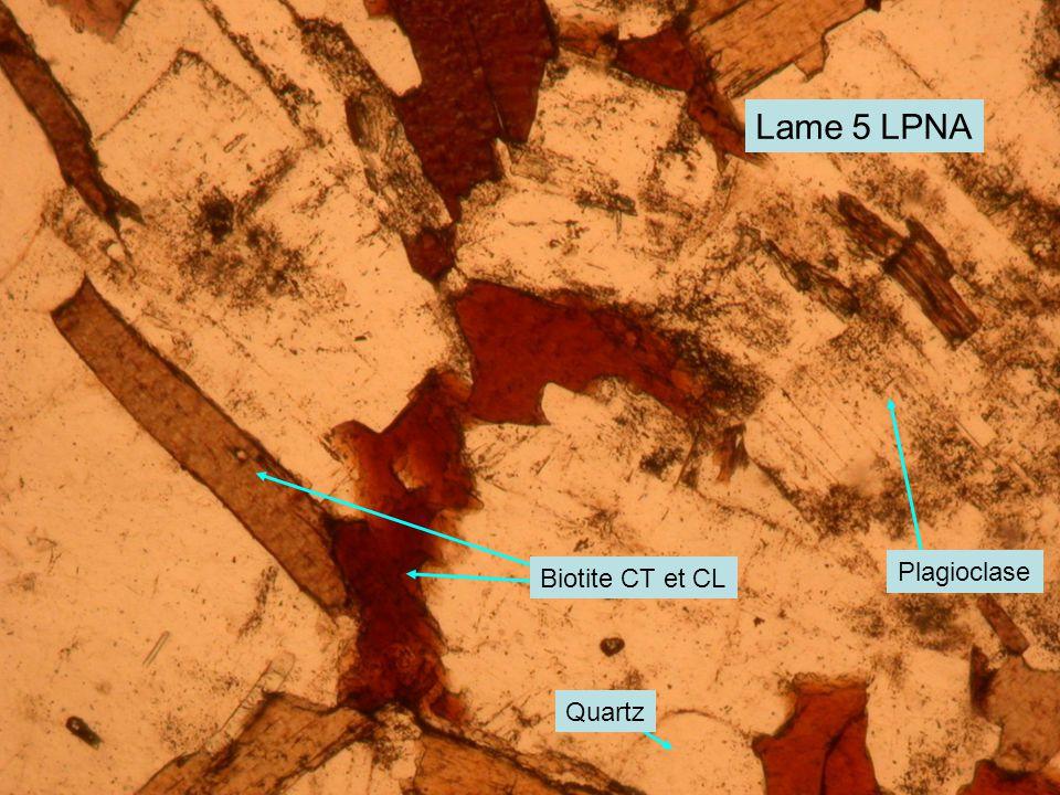 Lame 5 LPNA Biotite CT et CL Plagioclase Quartz