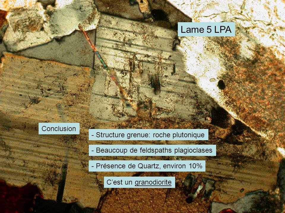 Lame 5 LPA Conclusion - Structure grenue: roche plutonique - Beaucoup de feldspaths plagioclases - Présence de Quartz, environ 10% C'est un granodiorite