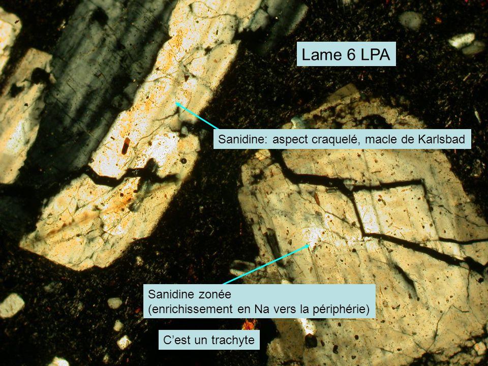 Lame 6 LPA Sanidine: aspect craquelé, macle de Karlsbad Sanidine zonée (enrichissement en Na vers la périphérie) C'est un trachyte