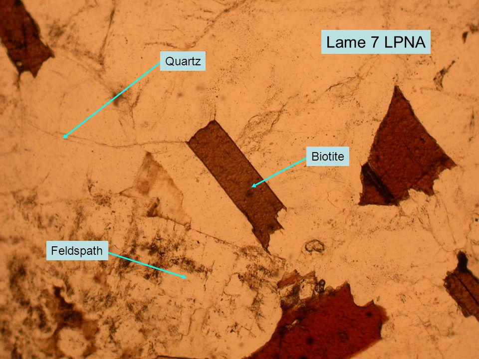 Lame 7 LPNA Biotite Quartz Feldspath
