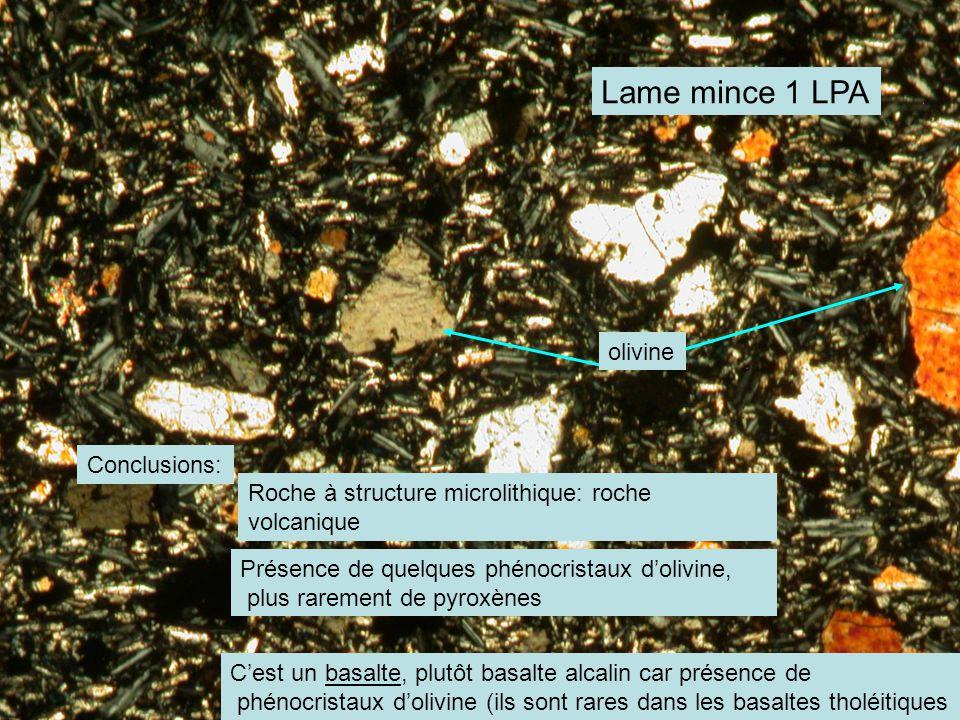 Lame mince 1 LPA olivine Conclusions: Roche à structure microlithique: roche volcanique Présence de quelques phénocristaux d'olivine, plus rarement de pyroxènes C'est un basalte, plutôt basalte alcalin car présence de phénocristaux d'olivine (ils sont rares dans les basaltes tholéitiques