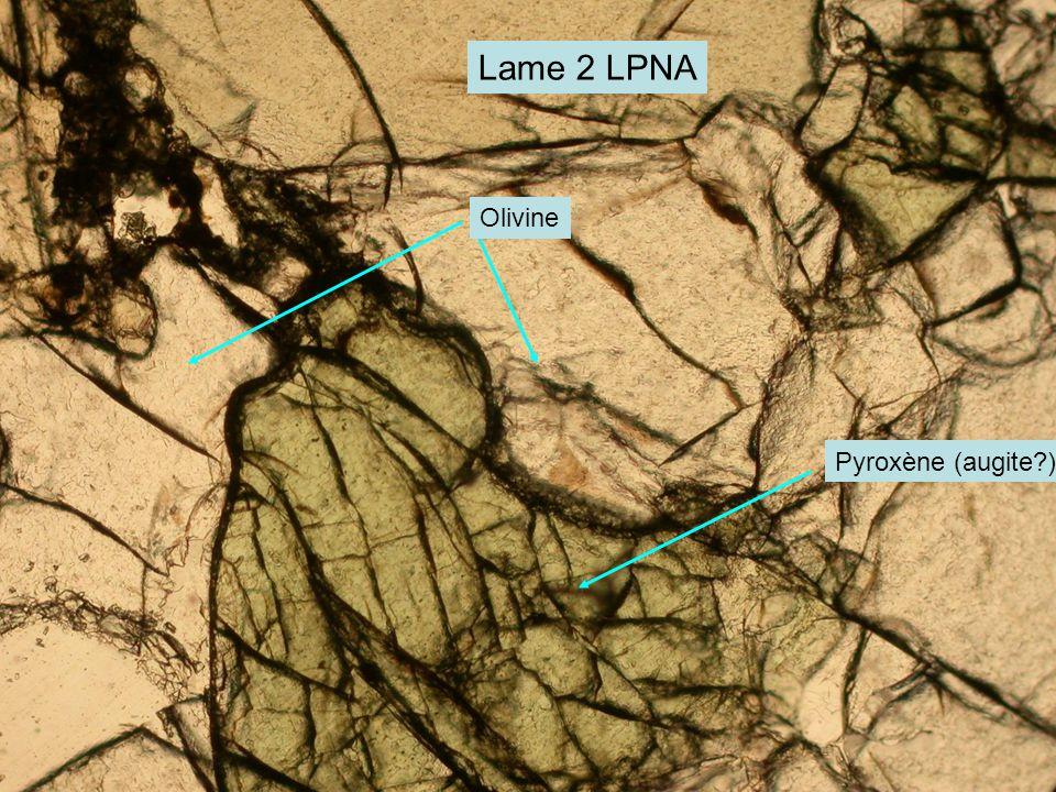 Lame 2 LPNA Pyroxène (augite?) Olivine