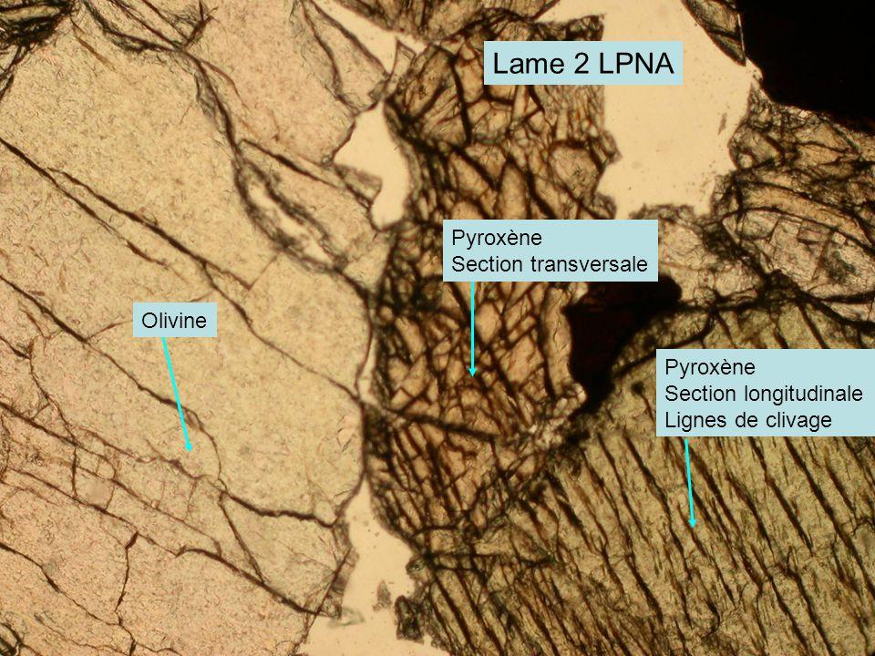 Lame 2 LPNA Olivine Pyroxène Section transversale Pyroxène Section longitudinale Lignes de clivage