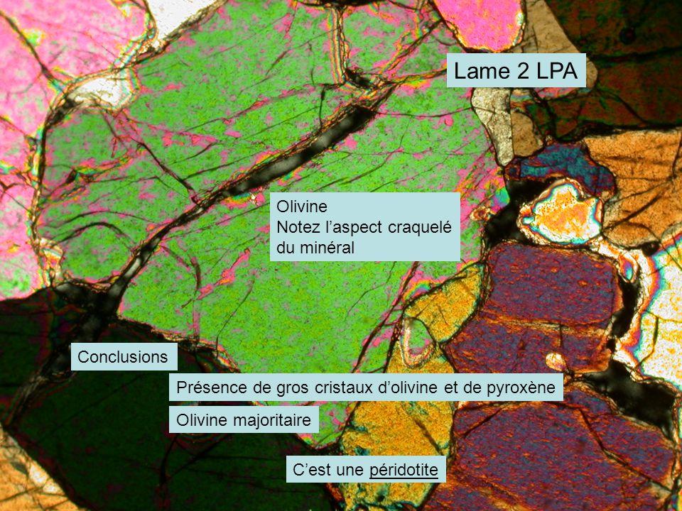 Lame 2 LPA Olivine Notez l'aspect craquelé du minéral Conclusions Présence de gros cristaux d'olivine et de pyroxène Olivine majoritaire C'est une péridotite