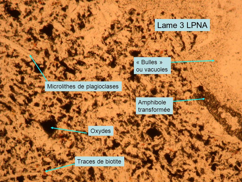 Lame 3 LPNA Microlithes de plagioclases « Bulles » ou vacuoles Amphibole transformée Oxydes Traces de biotite