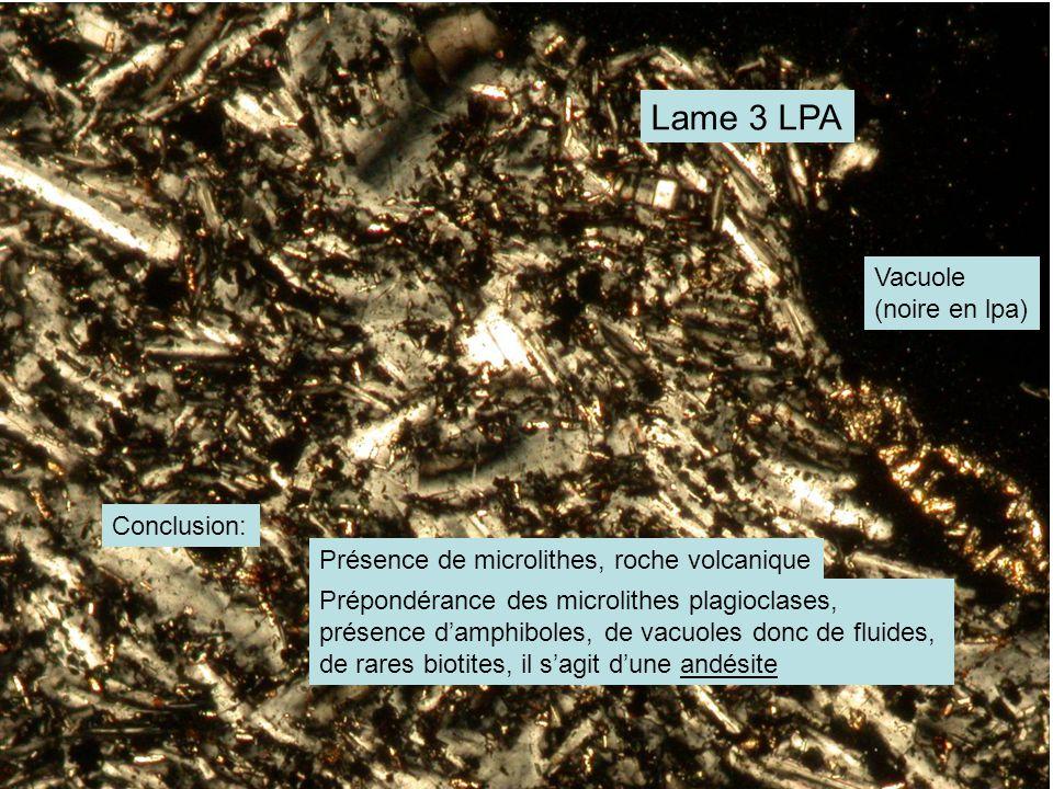 Lame 3 LPA Conclusion: Présence de microlithes, roche volcanique Prépondérance des microlithes plagioclases, présence d'amphiboles, de vacuoles donc de fluides, de rares biotites, il s'agit d'une andésite Vacuole (noire en lpa)