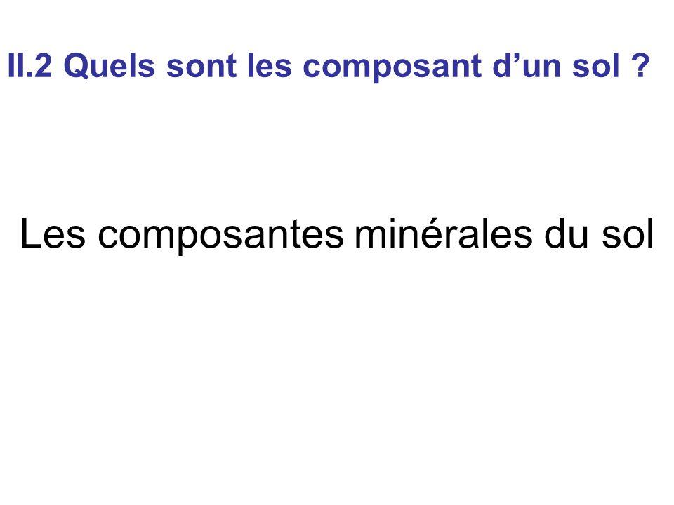 Les composantes minérales du sol II.2 Quels sont les composant d'un sol ?