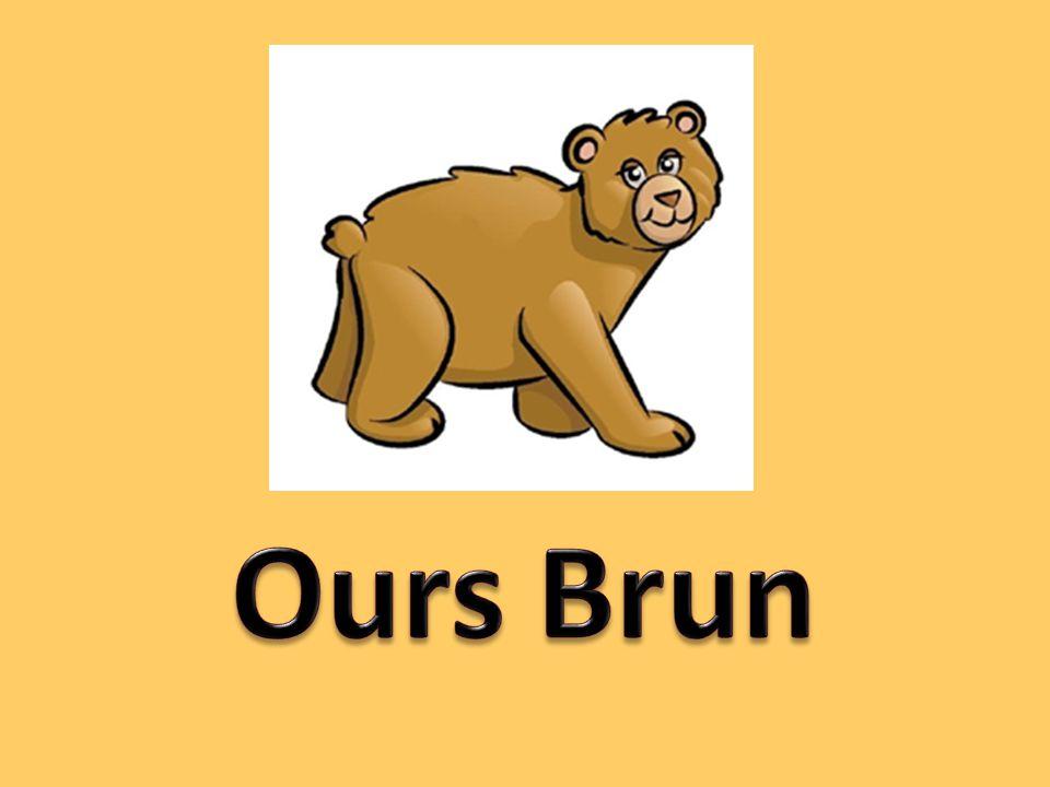 Ours brun, ours brun! Dis-moi, ce que tu vois? Je vois un oiseau rouge, et il regarde à moi!