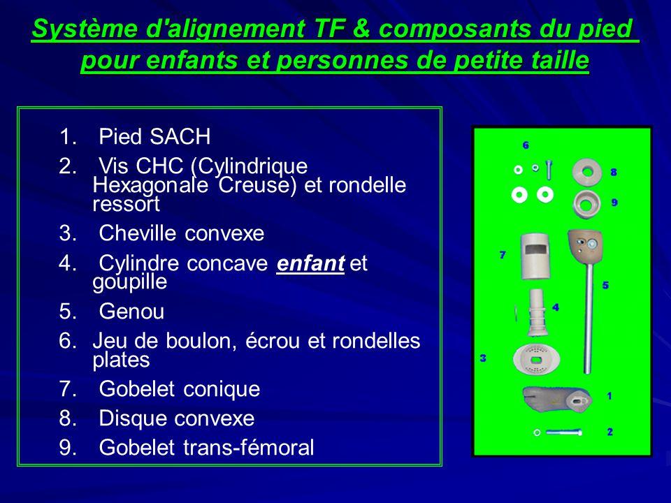 1. Pied SACH 2. Vis CHC (Cylindrique Hexagonale Creuse) et rondelle ressort 3. Cheville convexe 4. Cylindre concave enfant et goupille 5. Genou 6.Jeu