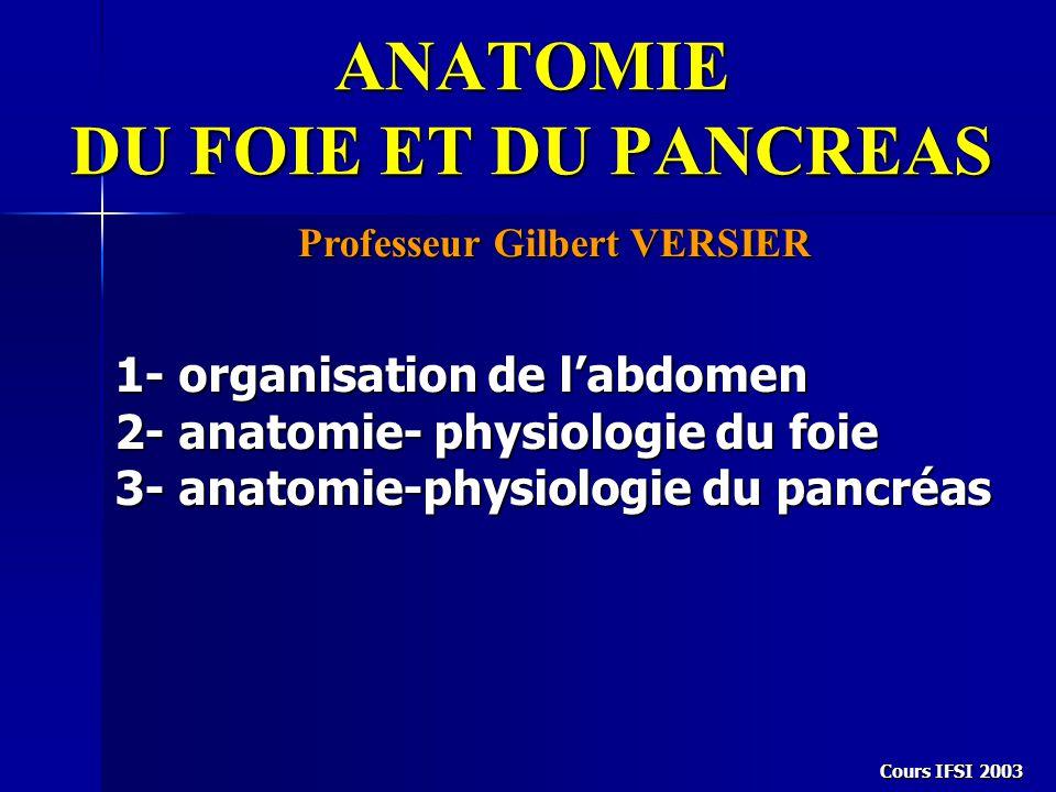 Cours IFSI 2003 ANATOMIE DU FOIE ET DU PANCREAS Professeur Gilbert VERSIER 1- organisation de l'abdomen 2- anatomie- physiologie du foie 3- anatomie-p