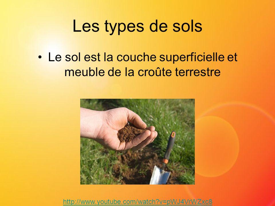 Les types de sols Le sol est la couche superficielle et meuble de la croûte terrestre http://www.youtube.com/watch?v=pWJ4VrWZxc8