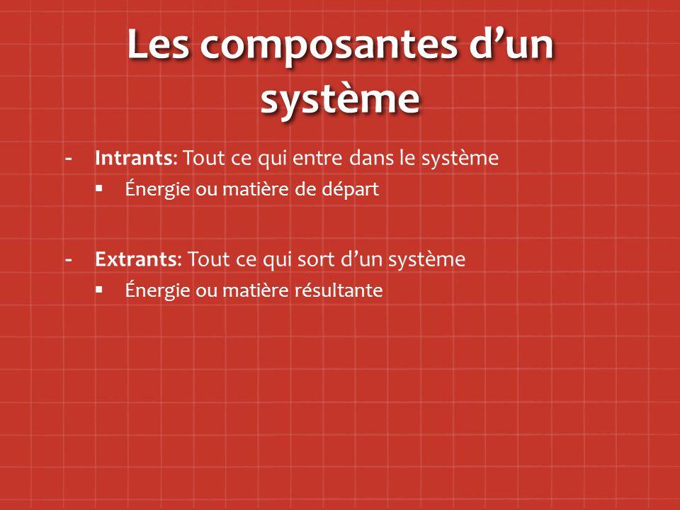 Les composantes d'un système - -Intrants: Tout ce qui entre dans le système   Énergie ou matière de départ - -Extrants: Tout ce qui sort d'un système   Énergie ou matière résultante