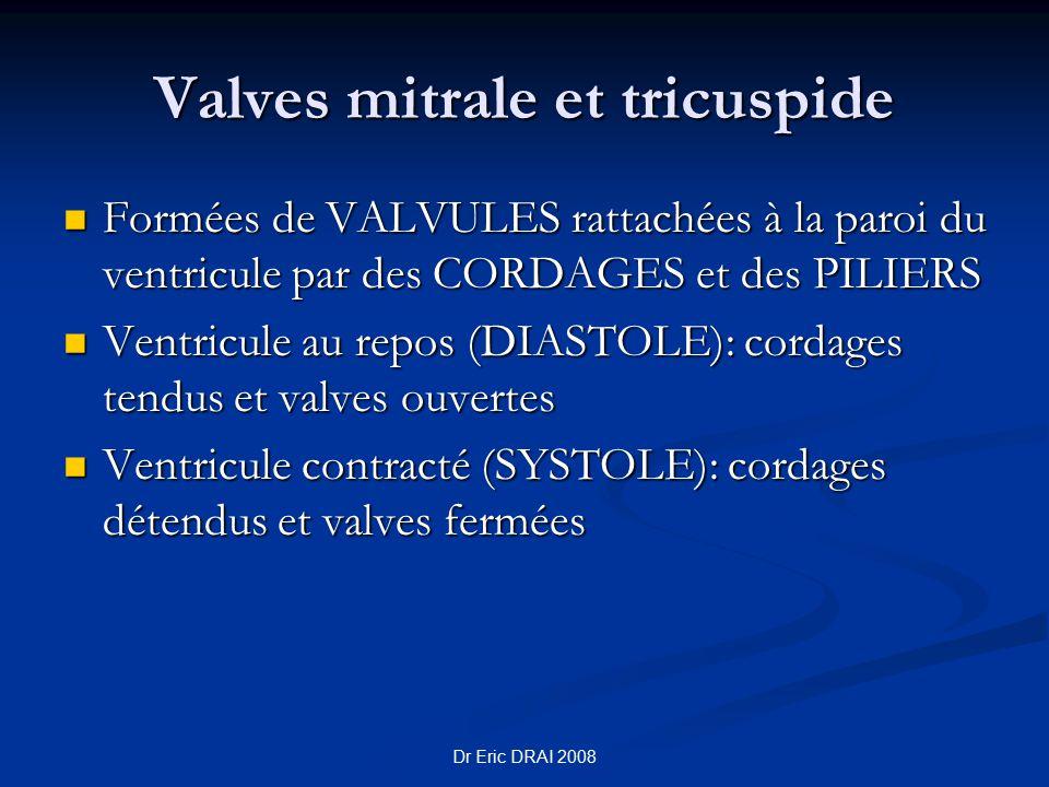 Dr Eric DRAI 2008 Valves mitrale et tricuspide Formées de VALVULES rattachées à la paroi du ventricule par des CORDAGES et des PILIERS Formées de VALV