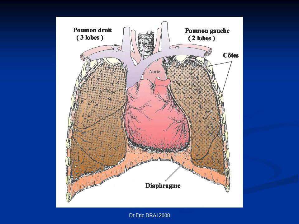 Dr Eric DRAI 2008 Débit cardiaque En moyenne 5 l/mn En moyenne 5 l/mn S'élève ++ lors d'un exercice physique S'élève ++ lors d'un exercice physique x 4 adulte normal x 4 adulte normal x 7 athlête x 7 athlête