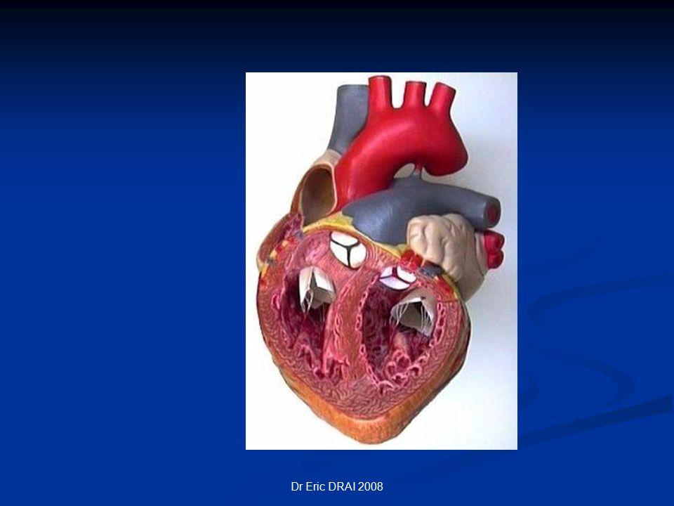 PHYSIOLOGIE Le cœur = 2 pompes .Le cœur = 2 pompes .