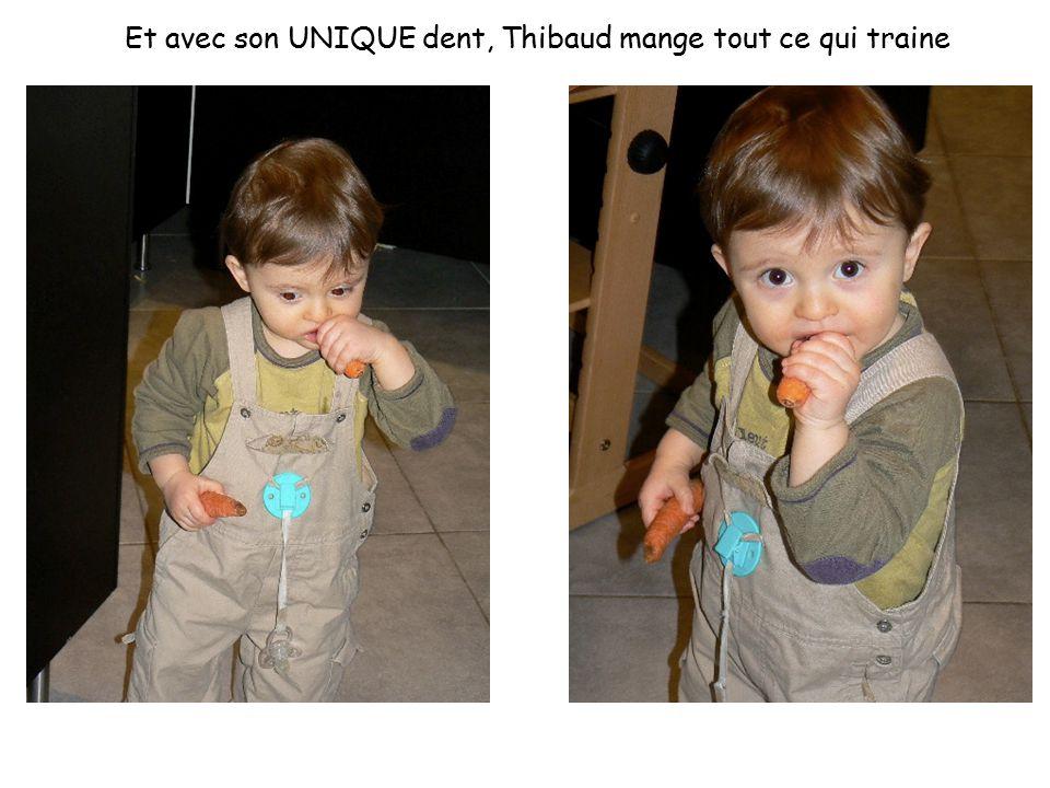 Et avec son UNIQUE dent, Thibaud mange tout ce qui traine