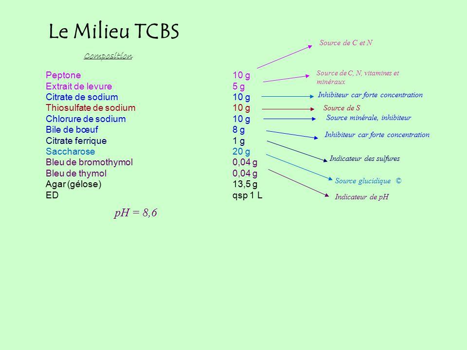 Peptone10 g Extrait de levure5 g Citrate de sodium10 g Thiosulfate de sodium10 g Chlorure de sodium10 g Bile de bœuf8 g Citrate ferrique1 g Saccharose20 g Bleu de bromothymol0,04 g Bleu de thymol0,04 g Agar (gélose)13,5 g EDqsp 1 L Composition Source de C et N Inhibiteur car forte concentration Indicateur de pH pH = 8,6 Source de C, N, vitamines et minéraux Source de S Source minérale, inhibiteur Le Milieu TCBS Source glucidique © Inhibiteur car forte concentration Indicateur des sulfures