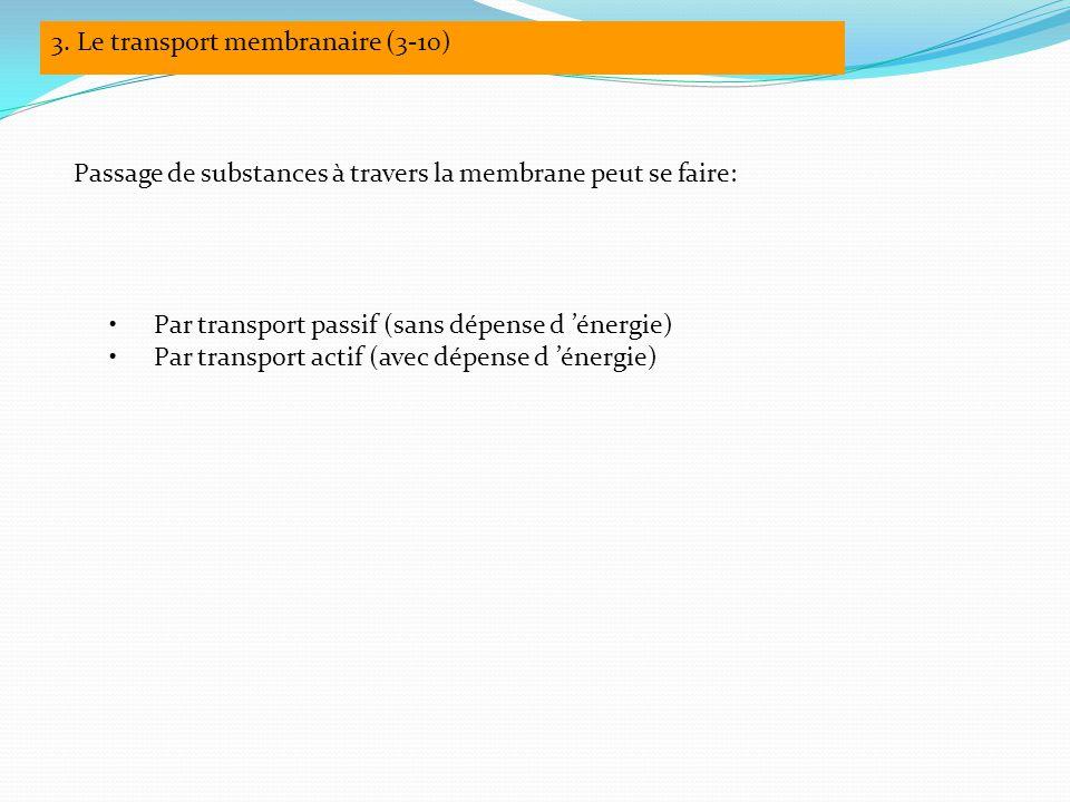 Passage de substances à travers la membrane peut se faire: Par transport passif (sans dépense d 'énergie) Par transport actif (avec dépense d 'énergie) 3.