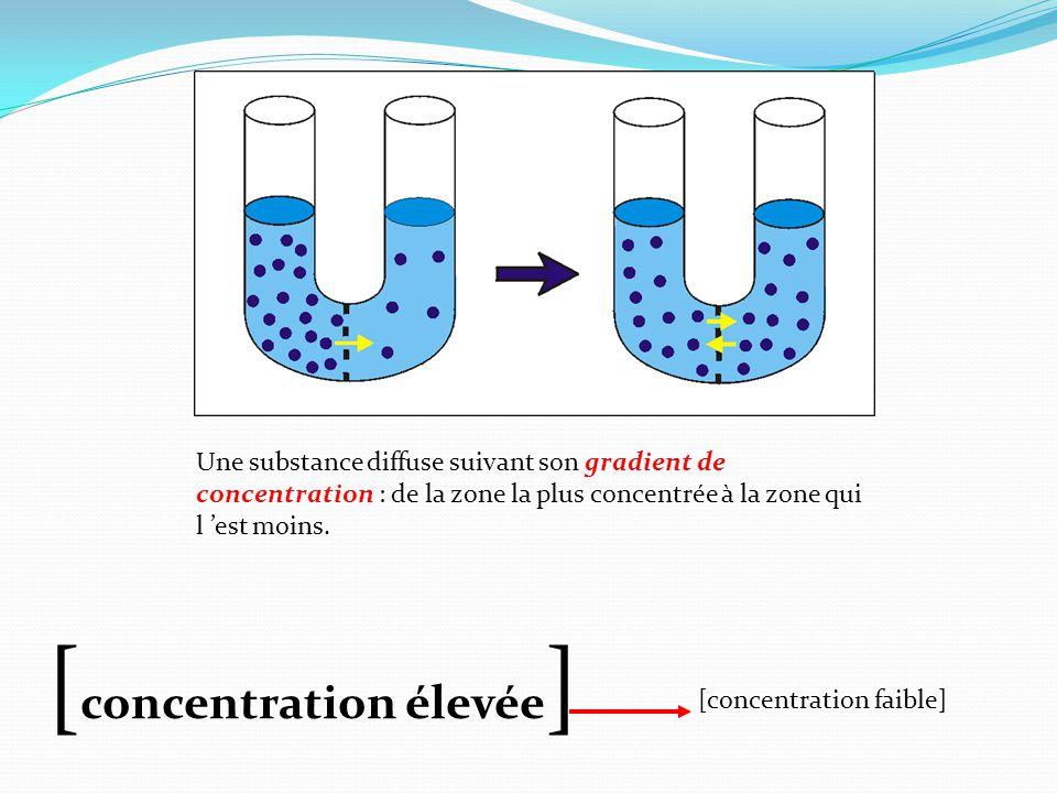 Une substance diffuse suivant son gradient de concentration : de la zone la plus concentrée à la zone qui l 'est moins.