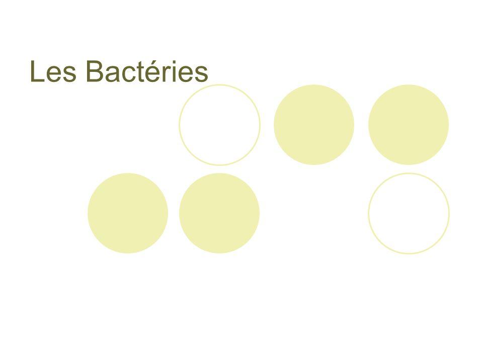 Reproduction entre cellules Transfert de matériel génétique entre deux cellules.