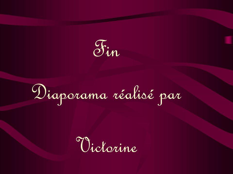 Fin Diaporama réalisé par Victorine