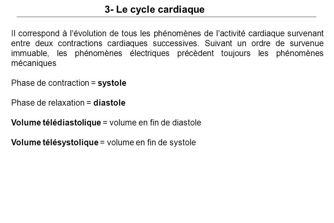 3- Le cycle cardiaque Il correspond à l'évolution de tous les phénomènes de l'activité cardiaque survenant entre deux contractions cardiaques successives.