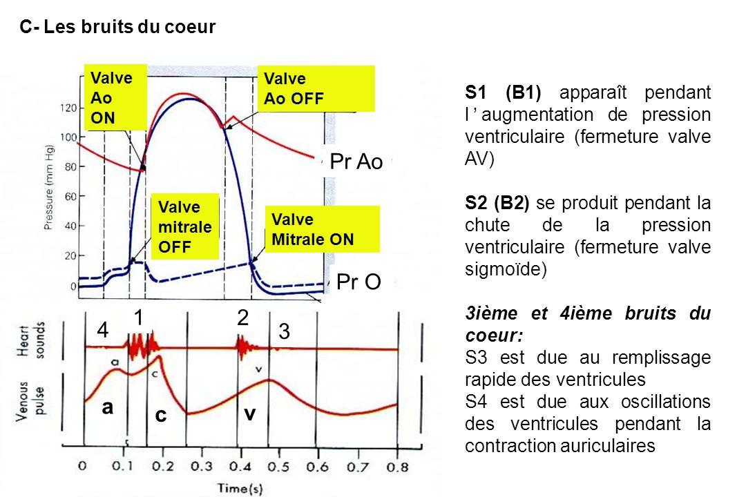 S1 (B1) apparaît pendant l'augmentation de pression ventriculaire (fermeture valve AV) S2 (B2) se produit pendant la chute de la pression ventriculaire (fermeture valve sigmoïde) 3ième et 4ième bruits du coeur: S3 est due au remplissage rapide des ventricules S4 est due aux oscillations des ventricules pendant la contraction auriculaires Valve Ao ON Valve Ao OFF Valve mitrale OFF Valve Mitrale ON Pr Ao Pr V Pr O a c v 4 3 1 2 C- Les bruits du coeur