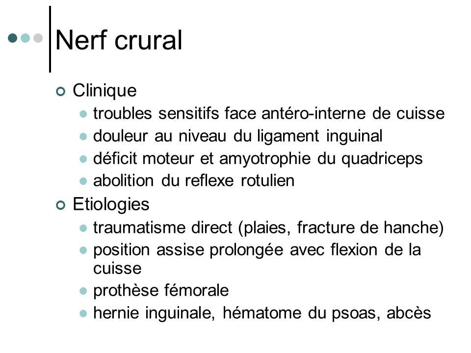 Nerf crural Clinique troubles sensitifs face antéro-interne de cuisse douleur au niveau du ligament inguinal déficit moteur et amyotrophie du quadrice