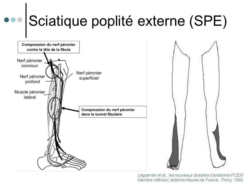 Sciatique poplité externe (SPE) Leguerrier et al., les nouveaux dossiers d'anatomie PCEM Membre inférieur, éditions Heures de France, Thoiry, 1992