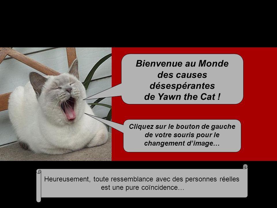 Bienvenue au Monde des causes désespérantes de Yawn the Cat .