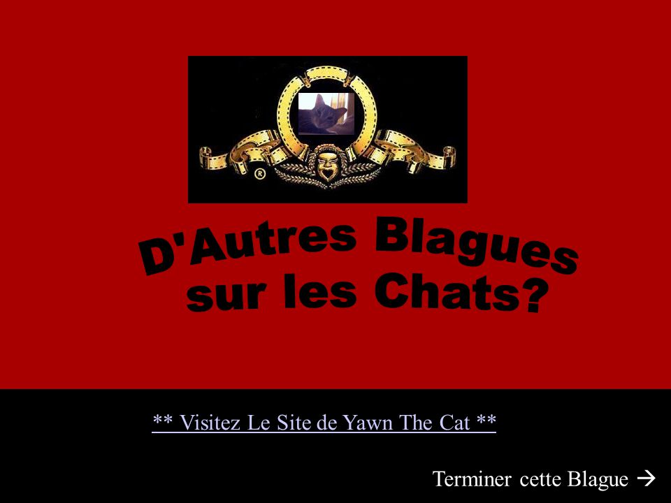 ** Visitez Le Site de Yawn The Cat ** Terminer cette Blague 