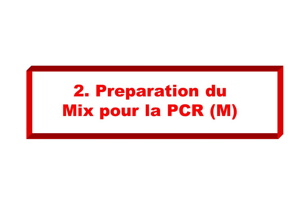 2. Preparation du Mix pour la PCR (M)