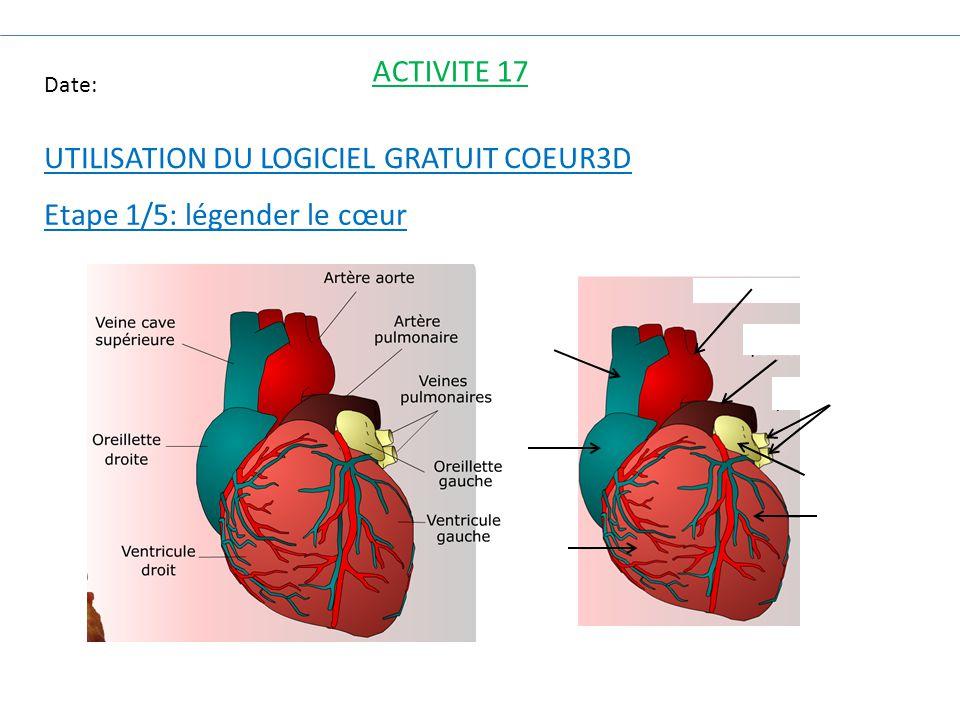 Date: ACTIVITE 17 UTILISATION DU LOGICIEL GRATUIT COEUR3D Etape 1/5: légender le cœur
