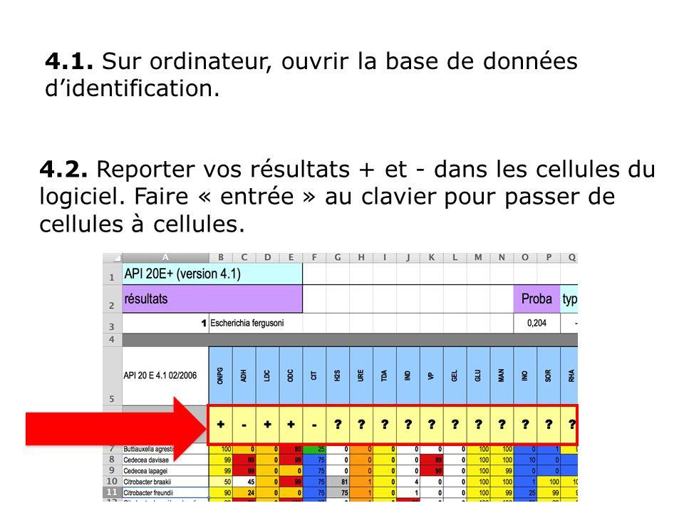4.2.Reporter vos résultats + et - dans les cellules du logiciel.